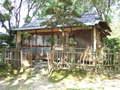 2006_08070058